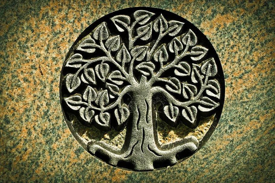 Milujeme Kameny - strom života